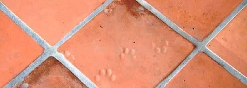 Cómo limpiar suelos de barro cocido - Brillocor