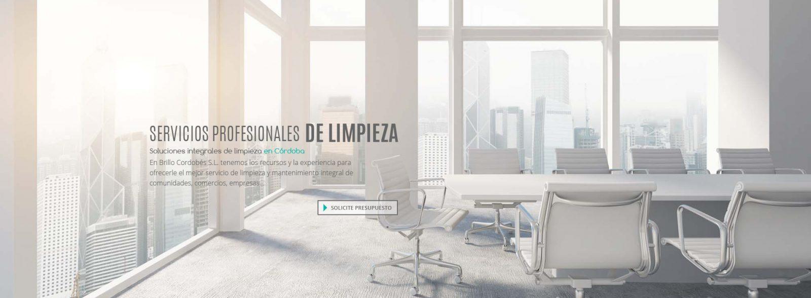 Brillocor - Empresa de limpieza en Córdoba