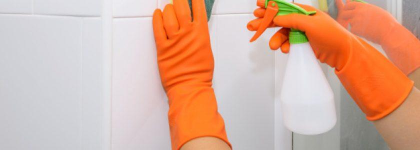 Trucos de Brillocor para la limpieza del baño - Brillocor