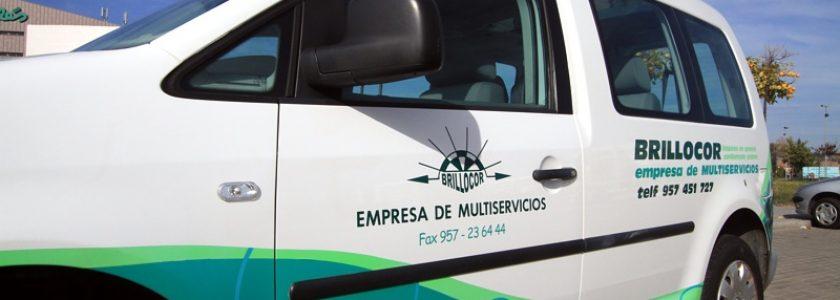 Contrata tu empresa de limpieza profesional en Córdoba: 5 razones que te harán ver que esto no es un lujo - Brillocor
